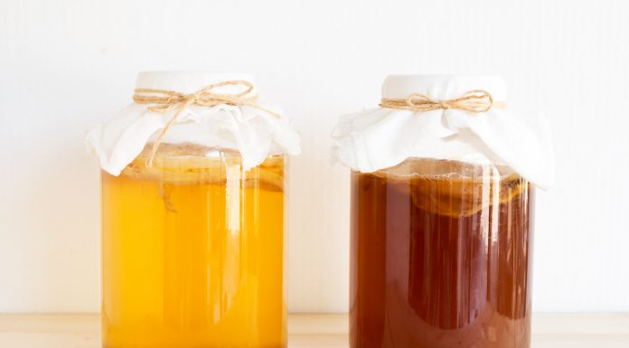 kombucha tea health benefits