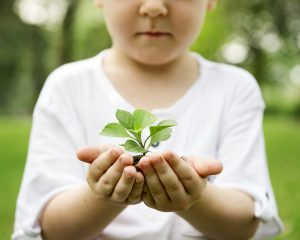 educate children about importance of trees