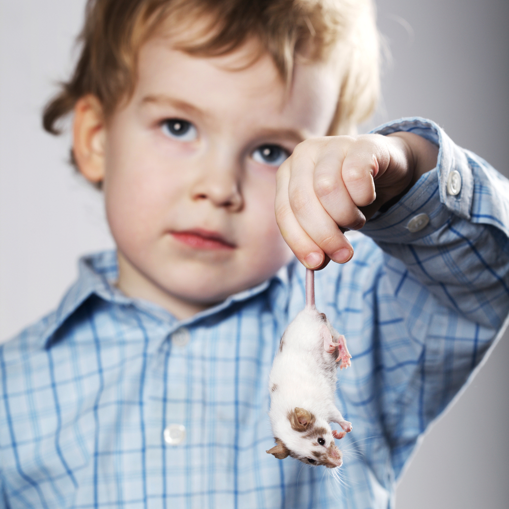 why kids shoulp play and grow up with pets