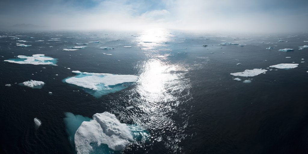Ice sheet floating in the ocean