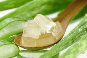 Aloe vera helps treat acne, relieve irritation on the skin, clean skin