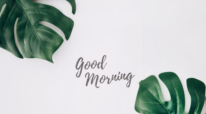 Best Morning Habits
