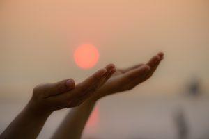 Wonderful self-healing organism ability meditation