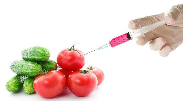 Popular Myths about GMOs