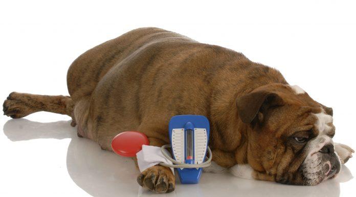 high blood pressure, hypertension, natural remedies to cure high blood pressure