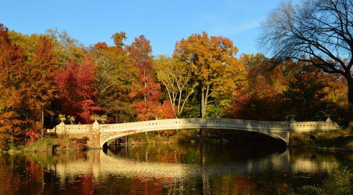 Fall in USA