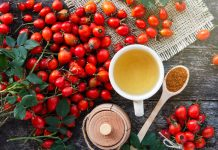 Rose hip for human health, contradictions about rosehip useful properties, rosehip in modern medicine