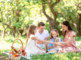 Family picnic in New York