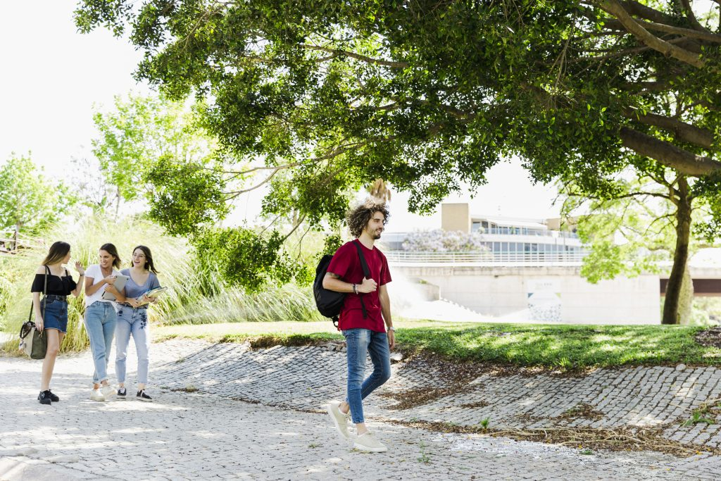 regular strolls benefits for brain activity, oxygenation of brain tissue, increase of creativity, increase of brain volume,